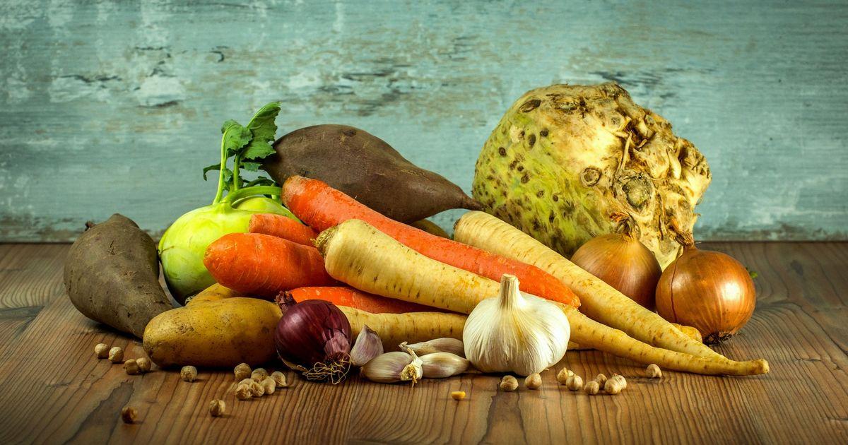 Légumes chien