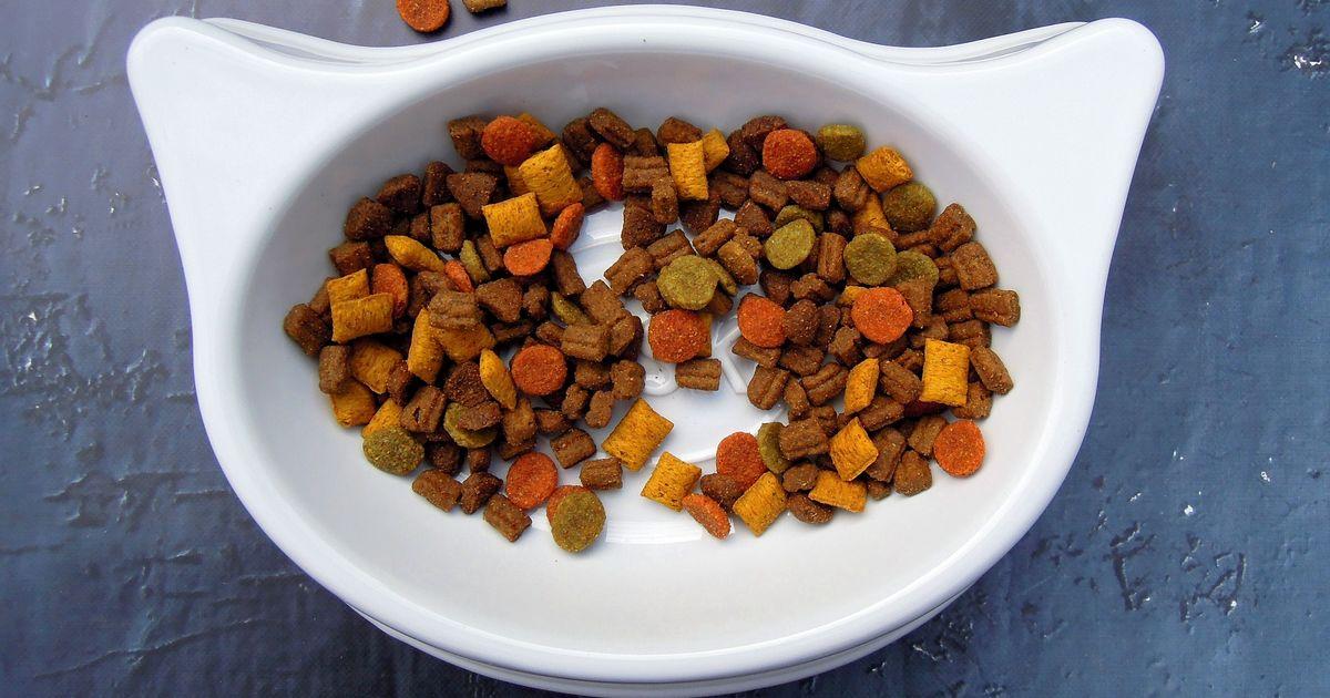 aliments destinés aux chats